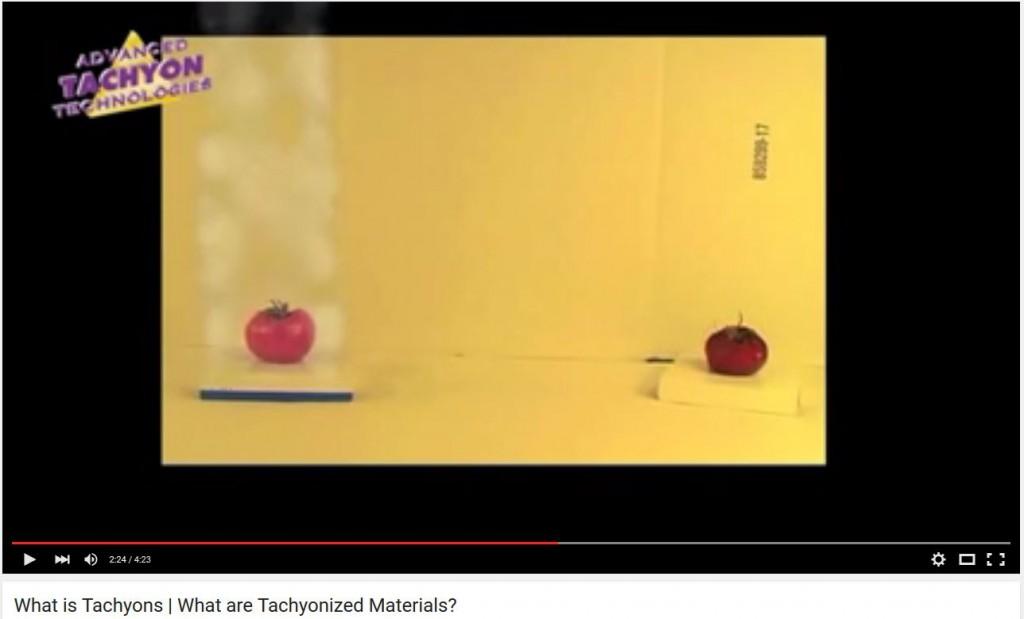 tachyon tomatoes